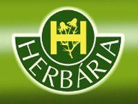Herbária Levendula Gyógynövénybolt – Velence, Velencei-tó